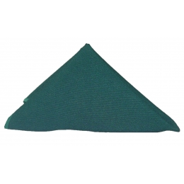 Guardanapo 0,35X0,35M Verde Musgo Oxford
